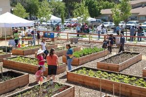 Vallejo PB Community Gardens.jpg